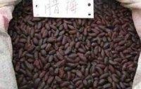 腊梅种子,腊梅种子播种技术,腊梅种子价格,腊梅种子出芽率