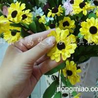 供应仿真花、绢花、干花、雏菊