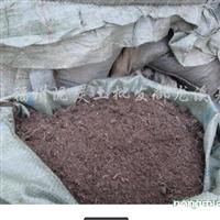 出售大批量福建的泥炭土