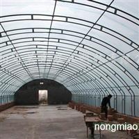承建新型日光温室大棚