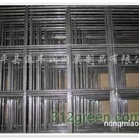 供应苗床网、温室用网、热镀锌网片