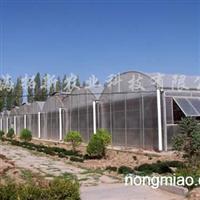 供应文洛式PC阳光板温室