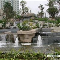 供棕榈湾假山水景