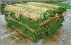 供应草坪毯
