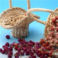供应千日红,千日紫,千日白,西班牙水草,拉菲草.