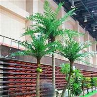 供应仿真椰子树.人造椰子树.人造植物.仿真植物.