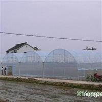 供应温室大棚苗床