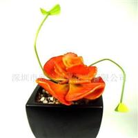 供应仿真植物-宝石花