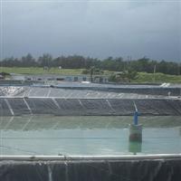 供邢台蓄水池复合膜鱼塘防渗膜