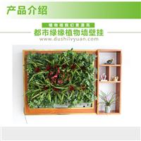 都市绿缘智能绿植壁挂 植物墙