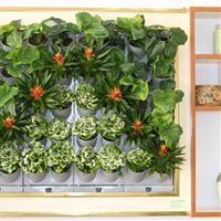都市绿缘新款智能绿植壁挂垂直绿化墙植物墙