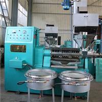 湖南Q茶籽榨油机油茶果种植技术