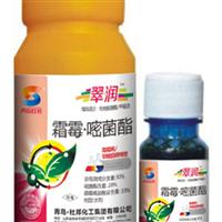 翠润 葡萄霜霉病防治 西红柿早晚疫病特效药