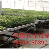 厂家供应育苗盆-育苗盆作用-育苗盆价格