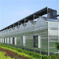 热销玻璃温室-钢骨架结构-PC阳光板-透光好