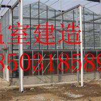 高品质玻璃温室-热镀锌骨架-透光率好-安平