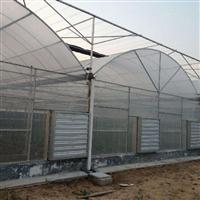 温室建造-塑料大棚的覆盖材料-成本低效益高
