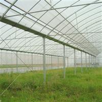 塑料大棚-作用-结构特点-形式多样-专业设计