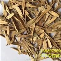 辽宁省白腊种子价格一览表