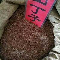 辽宁省山荆子种子多少钱一斤厂