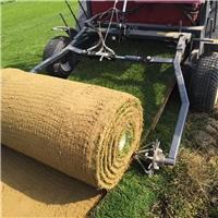 天泉一号草毯基地在哪,便宜的价格多少?