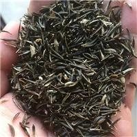 辽宁省扫帚梅种子多少钱一斤厂