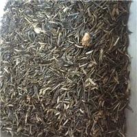 辽宁省扫帚梅种子多少钱一斤