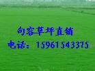 价格较便宜质量好电15961543375