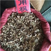批发 元宝枫种子  当年�袷� 品种纯正