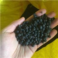 供应 水腊种子 水蜡种子 多少钱一斤