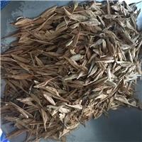 供应东北糖槭种子三遍机选