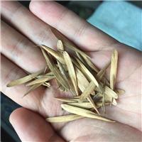 辽宁省白蜡种植株耐寒性好生长速度快