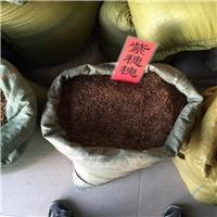紫穗槐种子厂家直销批发价格厂