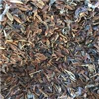 紫丁香种子大叶小叶丁香种子四季丁香种子