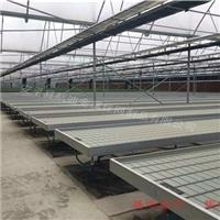 高效农业灌溉-潮汐式移动苗床出售