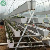 专业生产白色立体种植槽-厂家批发价