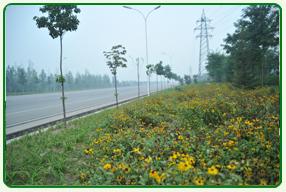承接园林绿化工程