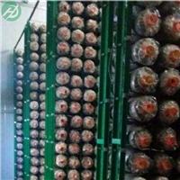 航迪蘑菰菌浸塑网片-食用菌培育网-安装