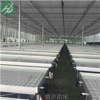 青川县温室移动苗床潮汐移动喷灌苗床设备