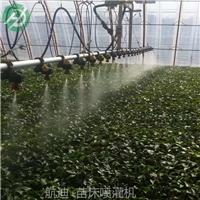 辽宁新型潮汐式灌溉移动苗床-面向全国直销