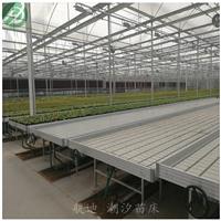 潮汐苗床-水肥一体化-自动给水苗床系统