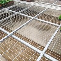 低价购苗床网片-安平温室育苗床设施厂