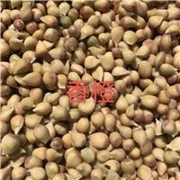 九江大量供应香橙种子价廉物美