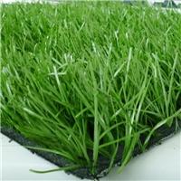 围挡塑料草坪哪有卖的 北京假草坪厂